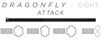 NL17_Epoch_DF8_Attack_lo